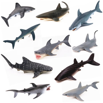 Realistische Ocean Animal Model Marine Animal Solid Whale Shark-serie Science Education Puzzle Toys